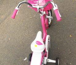 xe đạp bé gái 12 inch