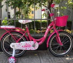 Xe đạp trẻ em 20 inch